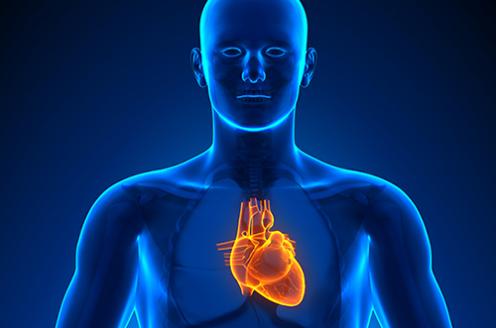 Aplicabilidade da Cintilografia Miocárdica de Perfusão na Avaliação do Sincronismo Cardíaco